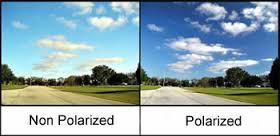 Polar vs Non